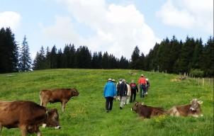De 5 mooiste hikes van Kroatië